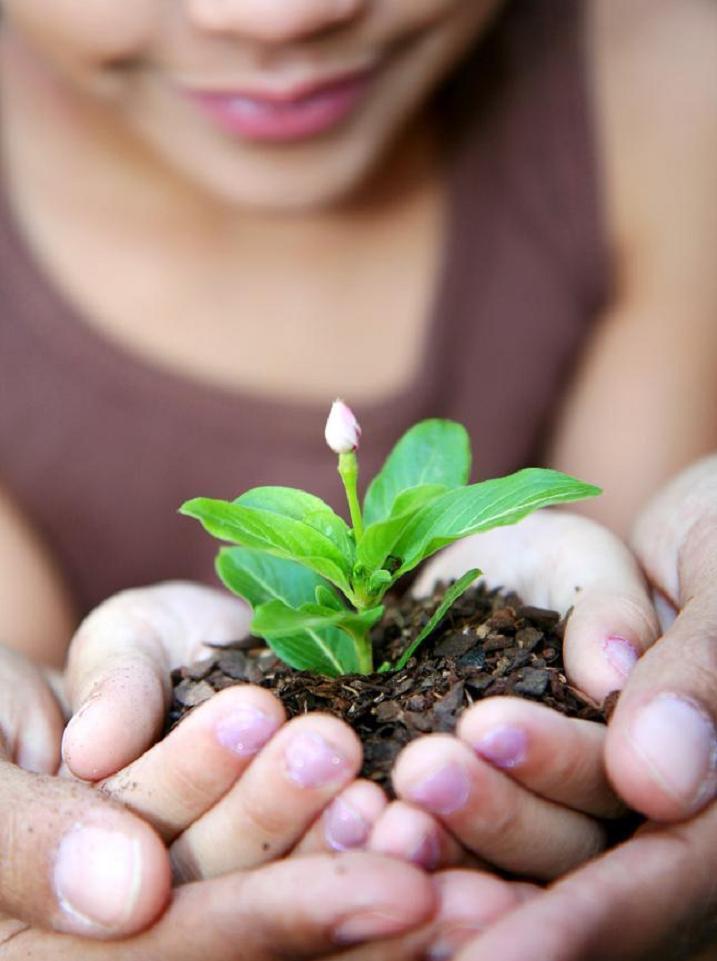 Opération Produits locaux, Développement durable